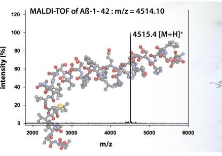 amyloid
